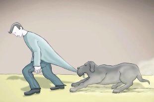 Image result for black dog depression